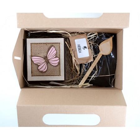 Домашна градинка Цветя: Невен - отворена кутия